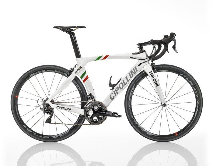 THE ONE ITALIAN CHAMPION SHINY